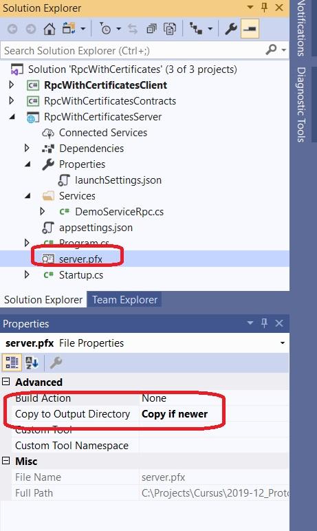 Inkludieren server.pfx Datei im Projekt